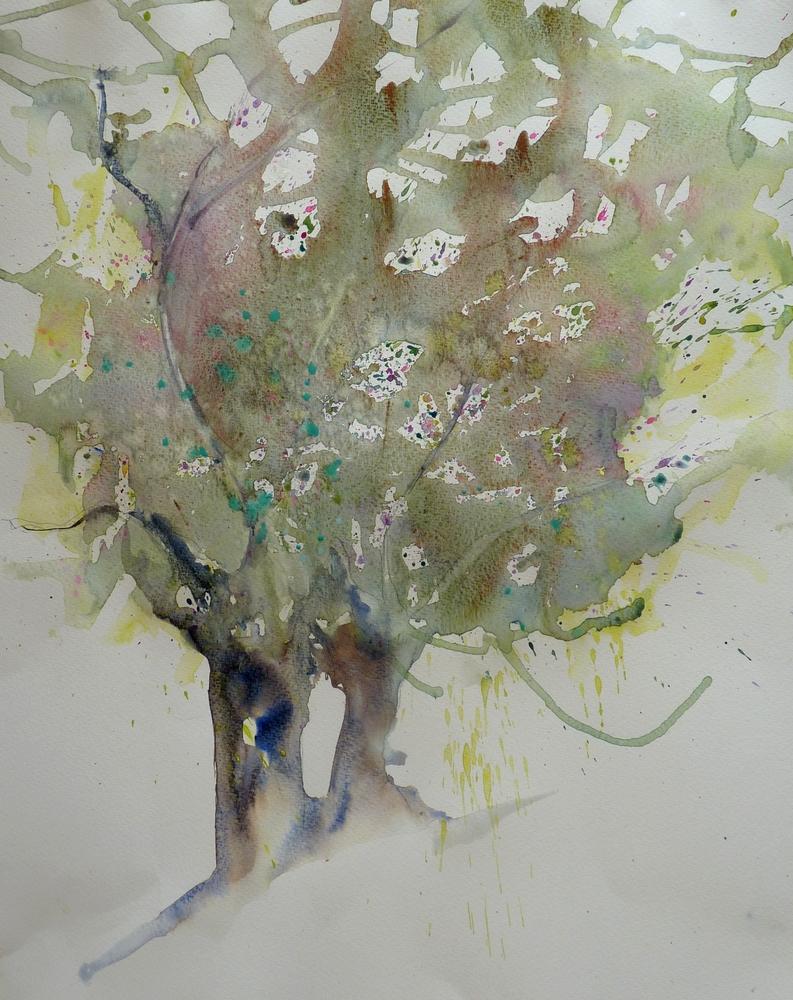arbre7
