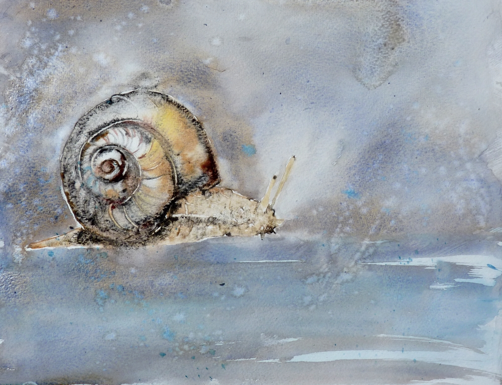 L' escargot