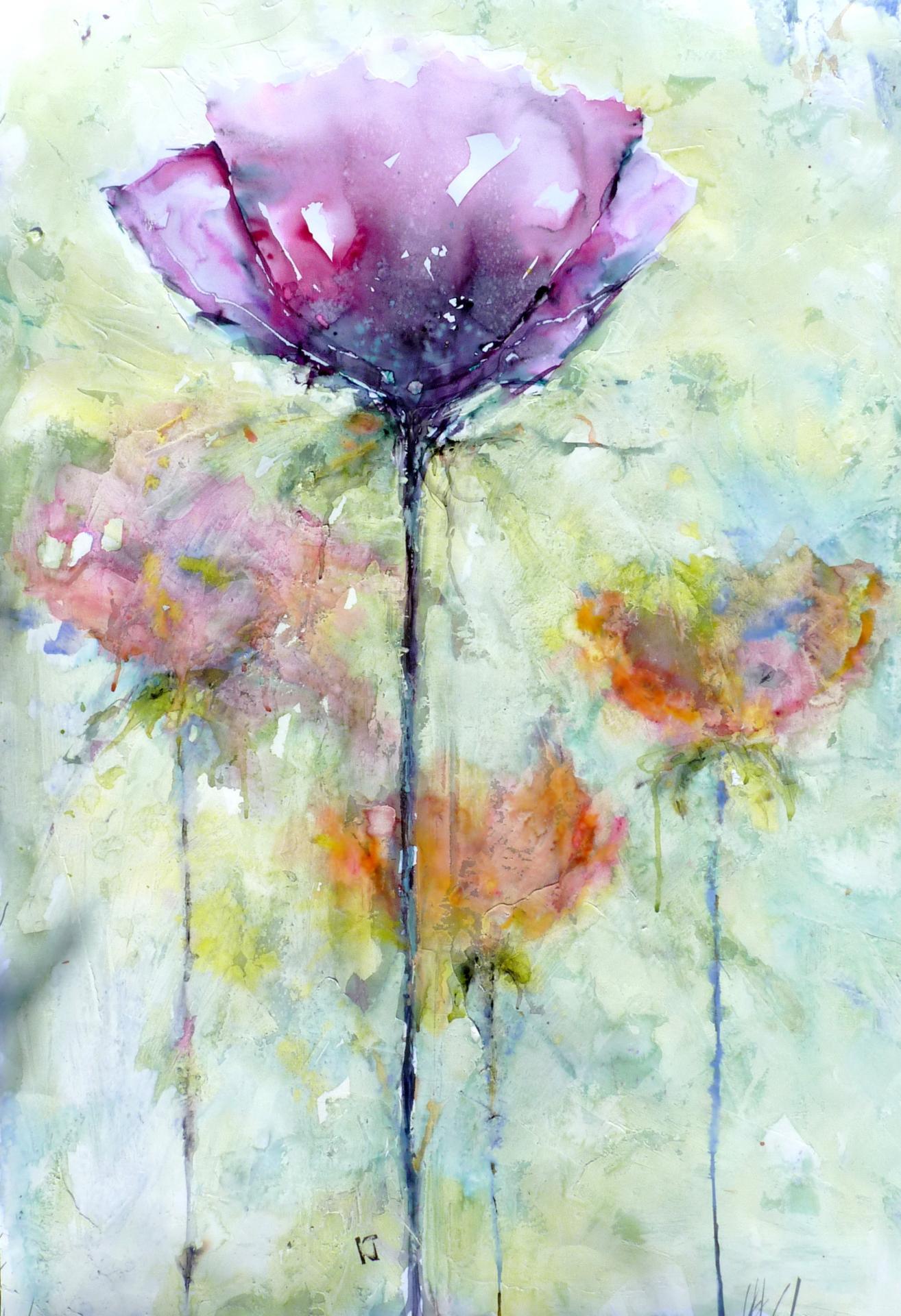 Les roses de Blanche